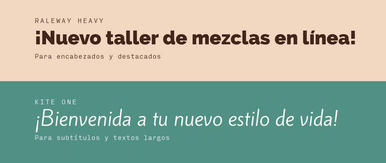 Presentación-Identidad-y-Línea-Gráfica-Mayra-Gandarilla-27