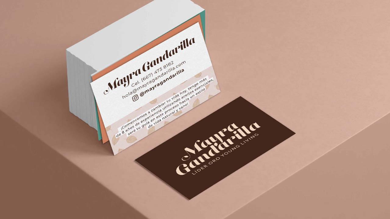 Presentación-Identidad-y-Línea-Gráfica-Mayra-Gandarilla-29